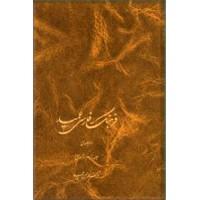 فرهنگ فارسی عمید ، دو جلدی