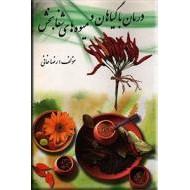 درمان با گیاهان و میوه های شفابخش